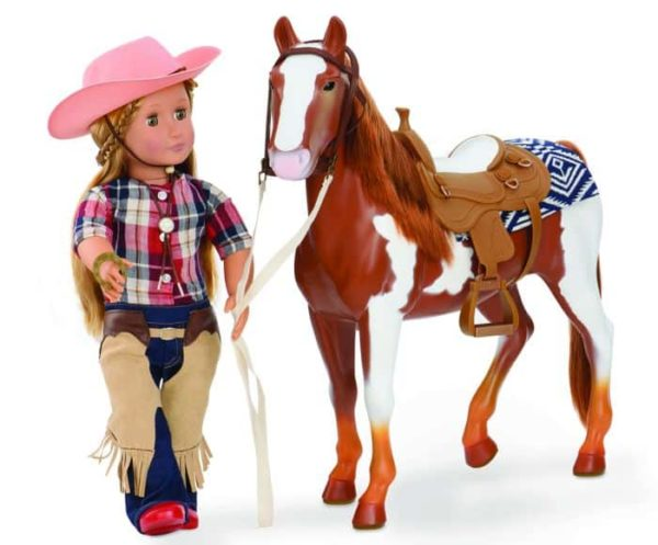 rodeo accessory set