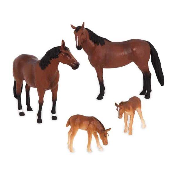 horse family