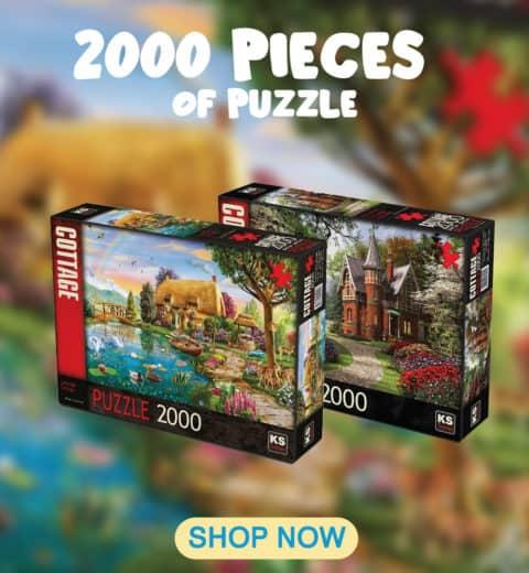 2000-pieces