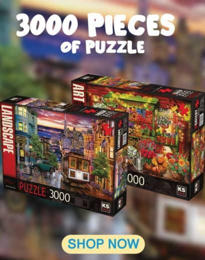 3000-puzzle