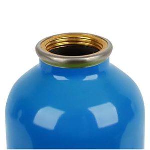 Stephen Joseph Stainless Steel Water Bottle Dino