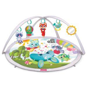 Babyspace Activity Gym Winfun